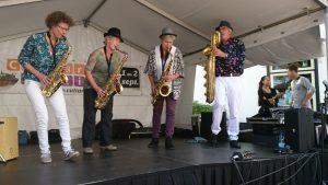 Cultureel Festival Baarn met Blovi