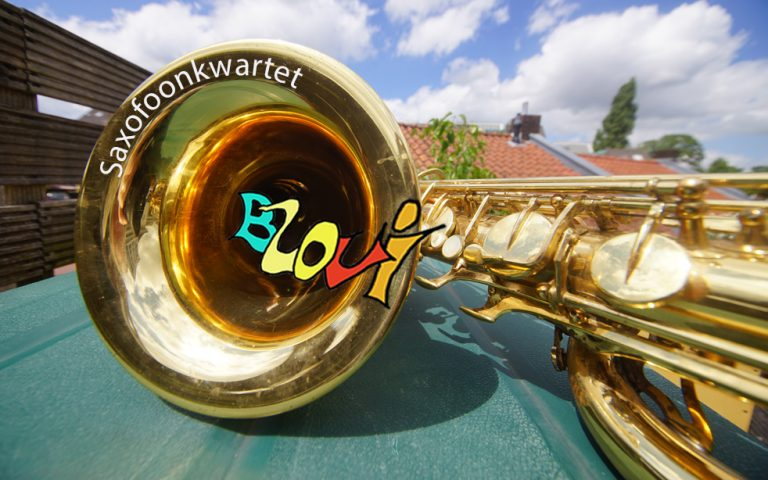 Saxofoonkwartet Blovi